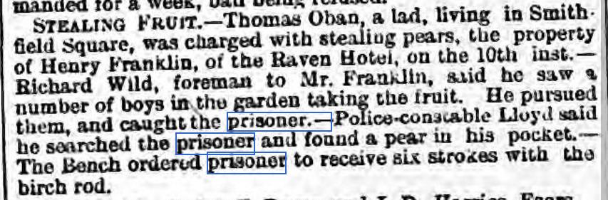 FRUIT Wellington Journal - Saturday 14 August 1886