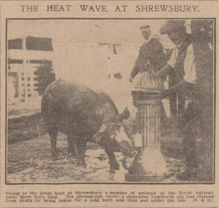 Daily Record - Thursday 02 July 1914