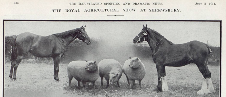 Illustrated Sporting and Dramatic News - Saturday 11 July 1914 part 1