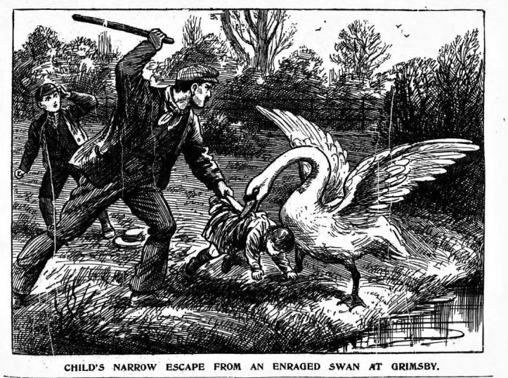 Illustrated Police News - Thursday 01 May 1913